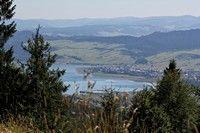 Jezioro Czorsztyńskie z pasma Lubania